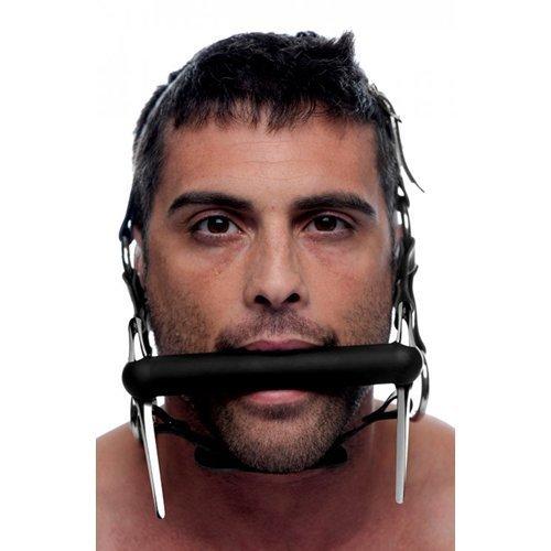 Kopfgeschirr aus Leder & Stahl