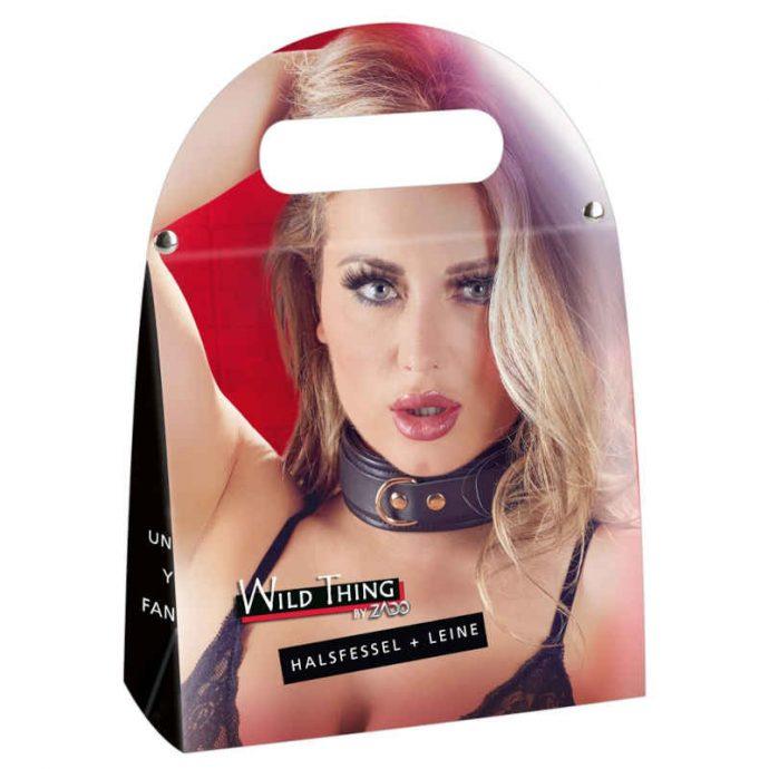 Leder Halsband und Leine
