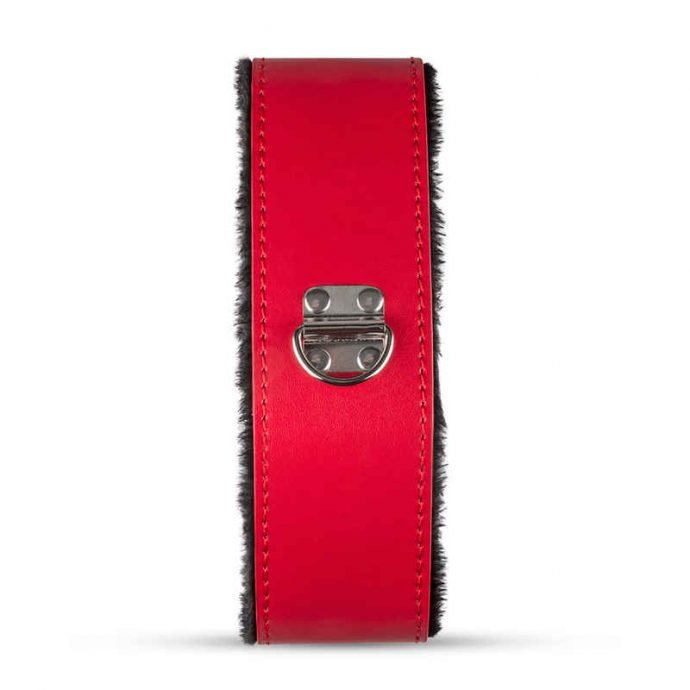 Bondage Set - Red Dragon