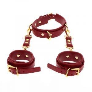 D-Ring Collar & Handfesseln